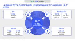 腾讯×BCG:《2020数